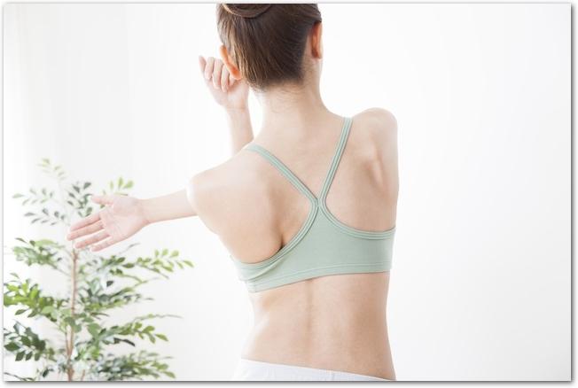 肩甲骨をストレッチする女性の背中