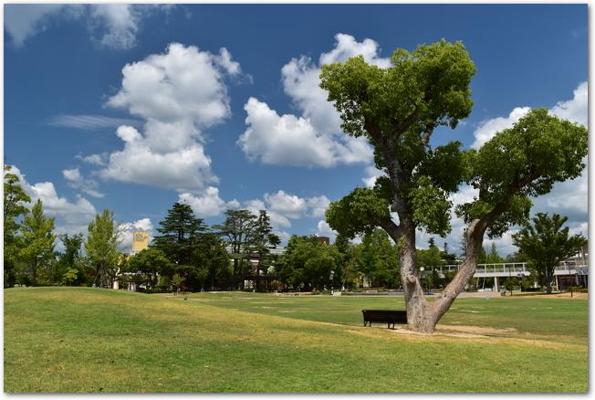 三井アウトレットパーク倉敷の側にある倉敷みらい公園の様子