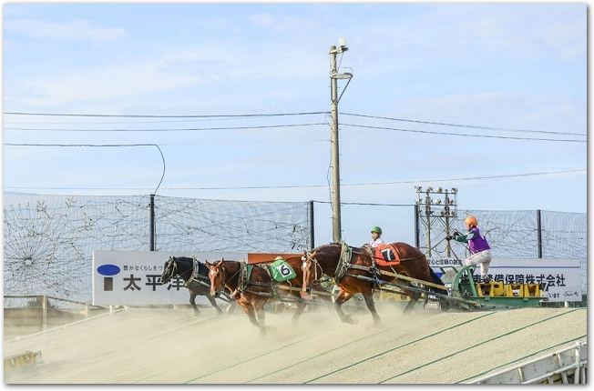 ばんえい競馬のレースで走っているばん馬と騎手の様子
